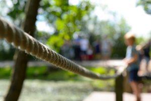 rope-2510937_640