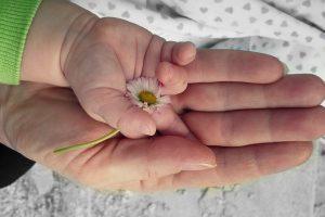 hands-105455_960_720