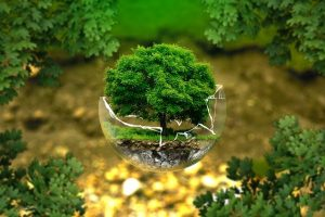 environmental-protection-g0d7be6d95_640